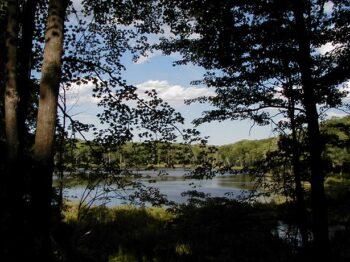 Reid Lake