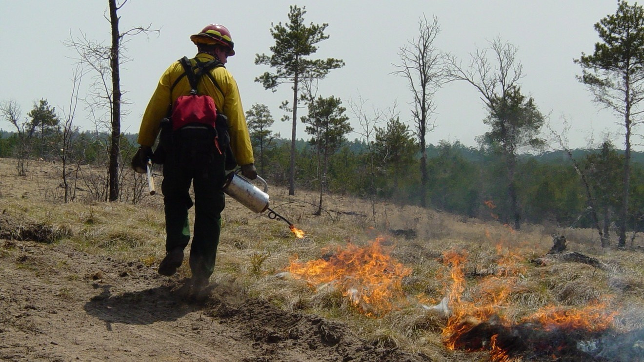 USDA prescribed burn